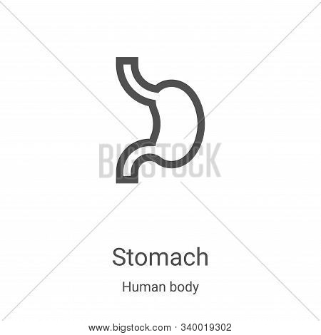 stomach icon isolated on white background from human body collection. stomach icon trendy and modern