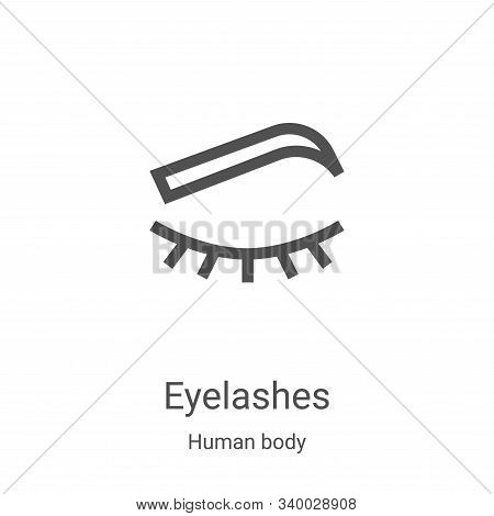 eyelashes icon isolated on white background from human body collection. eyelashes icon trendy and mo