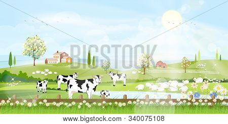 Rural Farm Landscape With Green Fields And Barn Animals Cow, Goats, Sheep And Windmills On Hill With