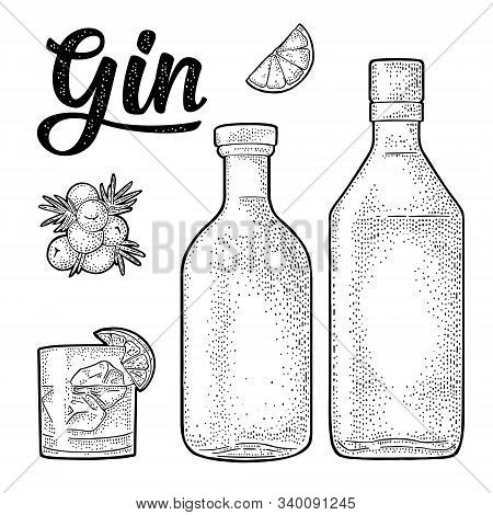 Glass And Bottle Of Gin And Branch Juniper. Vintage Engraving