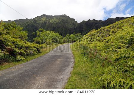 Road And Koolau Mountain Range