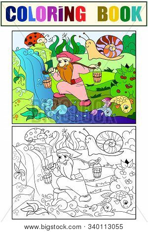 Childrens Coloring And Color. Forest, A Magic Dwarf Is Picking Up Water In A Creek