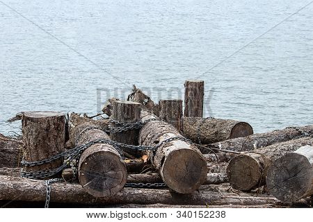 Tree Trunks Bound Together With Chains Floating In Lake Washington