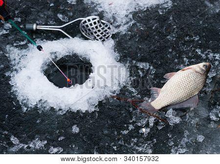 Winter fishing on the lake. Ice hole, fishing rod and fish