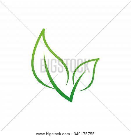 Green Leaf Icon. Eco Symbol Vector Illustration