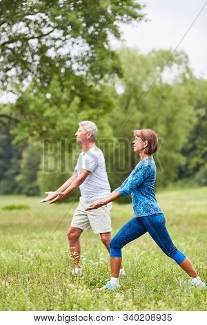 Senior couple doing a tai chi exercise in a wellness class in nature
