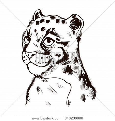 Clouded Leopard Baby Tabby Neofelis Wild Cat From Himalayan T-shirt Print, Isolated Monochrome Desig