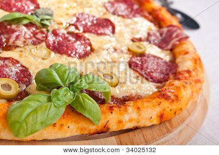 salami pizza with basil close-up