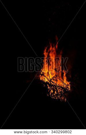 Bonfire Burning Trees At Night. Large Orange Flame Isolated On A Black Background. Fire On Black. Br