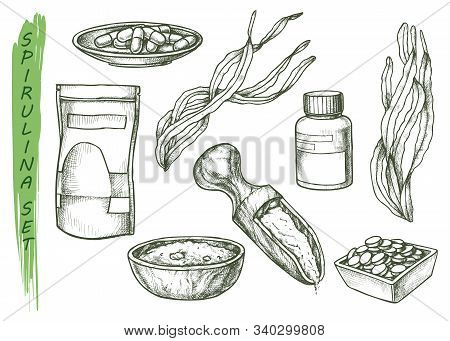 Spirulina Seaweed Sketch Icons For Dietary Supplement