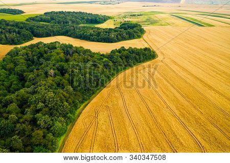 Breathtaking top view of agricultural area and cultivated fields in sunny day. Location place of Ukraine, Europe. Drone photography. Concept of agrarian industry. Discover the beauty of world.