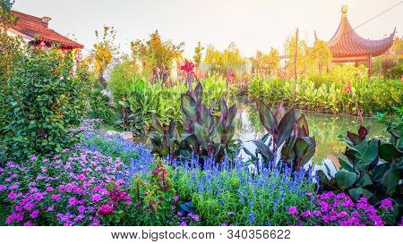 Colorful Chinese Garden Beautiful Flowers And Green Plant With Pond Water / Traditional Tropical Gar