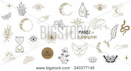 Vector Witch Magic Design Elements Set. Hand Drawn, Doodle, Sketch Magician Collection. Witchcraft S