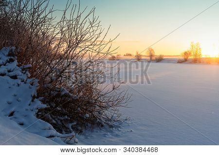 A Bush Is Covered With Snow And Frost By A River At The Northern Finland. The Morning Sun Warms Up T