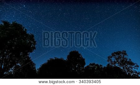 Starry Sky Landscape, Blue Sky Full Of Stars With Tree In Foreground