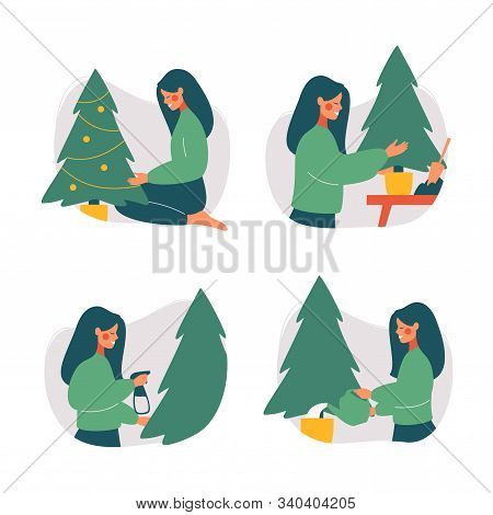 Young Woman Replanting Christmas Tree And Care For It. Reuse Xmas Tree. Green Christmas Concept. Vec