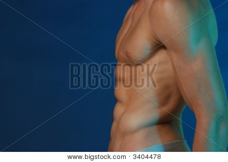 thin male torso with great abs