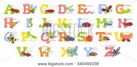 Cartoon Insects Alphabet. Funny Bug Letters, Comic Insect Abc For Kids And Cute Bugs Vector Illustra