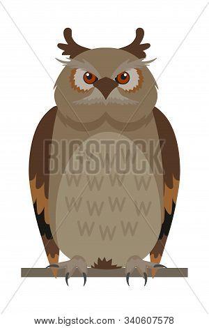 Owl Sitting On Branch Flat Vector Illustration. Wise Bird, Wisdom Symbol. Forest Wildlife, Nocturnal