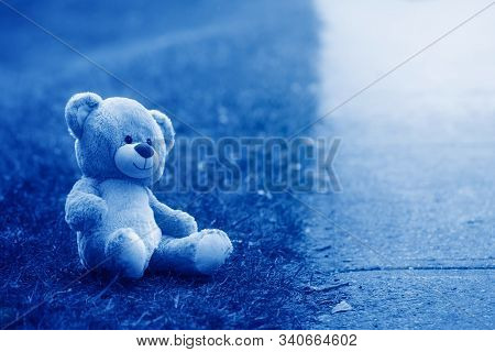 Cute Adorable Lost Abandoned Stuffed Children Toy Teddy Bear Left On Ground Street Road. Lost Lonely