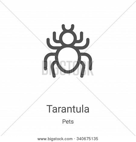 tarantula icon isolated on white background from pets collection. tarantula icon trendy and modern t