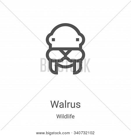 walrus icon isolated on white background from wildlife collection. walrus icon trendy and modern wal