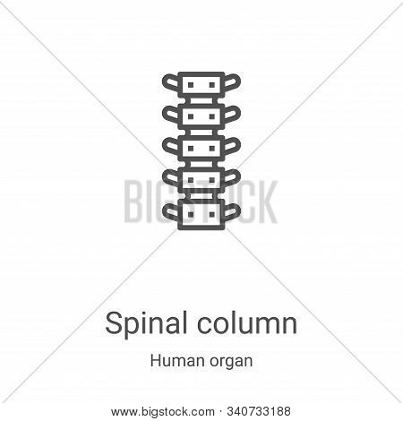 spinal column icon isolated on white background from human organ collection. spinal column icon tren