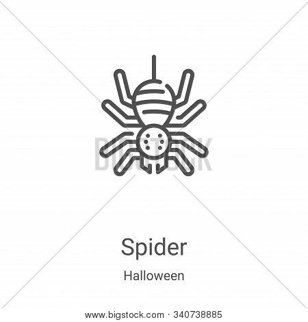 spider icon isolated on white background from halloween collection. spider icon trendy and modern sp