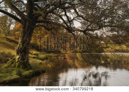 Stunning Autumn Fall Landscape Of Lake In Sunrise Soft Light In English Countryside