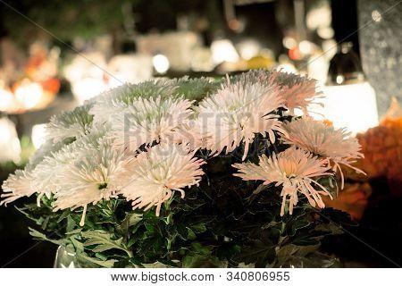 Old White Fake Flower On Grave Candlelit