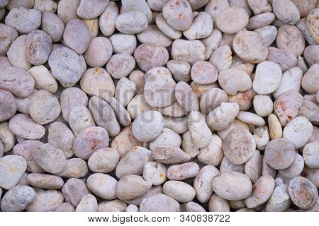 Pink Pebbles For Background And Texture Decoration Of Design Art Work.rock Or Stone Pebble Is Sign O