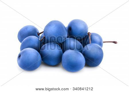 Blackthorn Or Sloe Berries Isolated On White Background. Prunus Spinosa