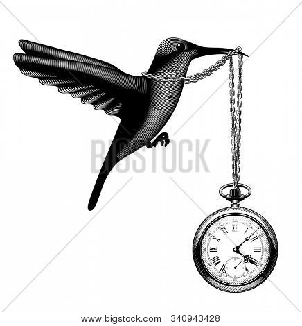 Flying hummingbird with a retro pocket watch in the beak. Vintage stylized drawing
