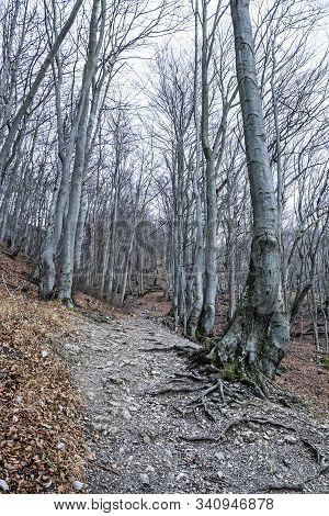 Strazov Hill, Strazov Mountains In Slovak Republic. Seasonal Natural Scene.