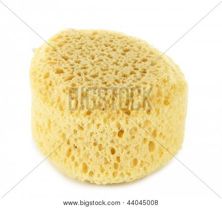 Sponges and sea sponge isolated on white