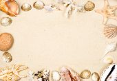 Seashells and starfish on sand background frame poster