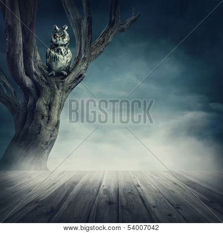 Owl sitting on the tree at night