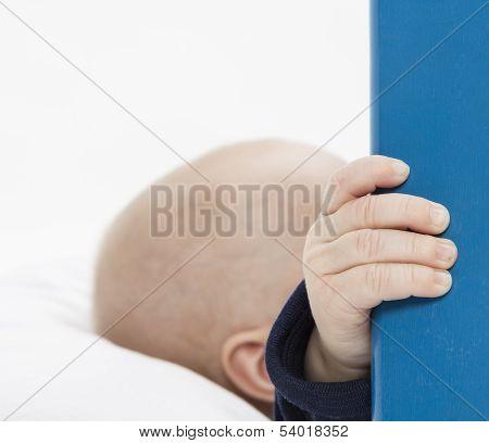Nurslings Hand Holding Blue Wooden Board