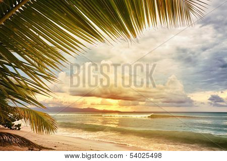 Sunset at caribbean sea beach, view through palm tree leaves, vintage processing