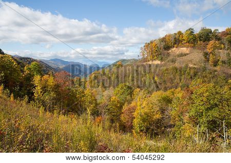 Blue Ridge Colors