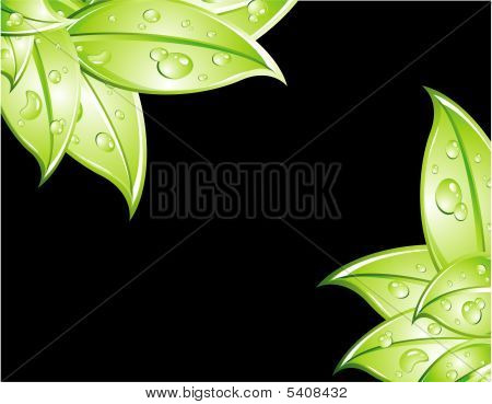 Think Green Background With High Contrast Colors