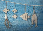 Marine life decoration and on blue shabby background poster
