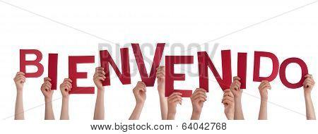 Hands Holding Bienvenido