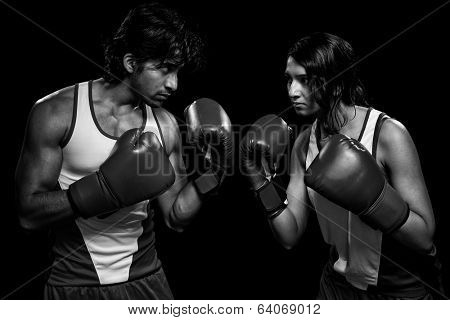 Male and female boxers