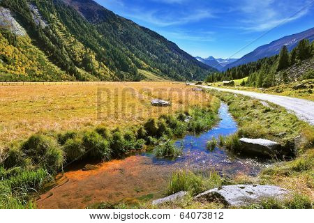 Headwaters Krimml waterfalls. Hillsides picturesque alpine valley covered with thick coniferous forest. Quick stream of clear water flowing in the middle of the canyon