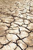Mud cracks dryness texture background Chiangrai Thailand poster