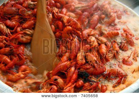 Stirring Crawfish