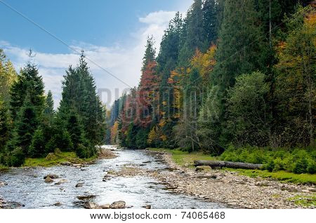 Mountain River In Autumn.