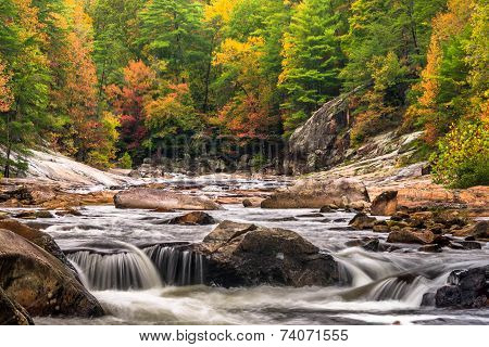 Wilson Creek Autumn