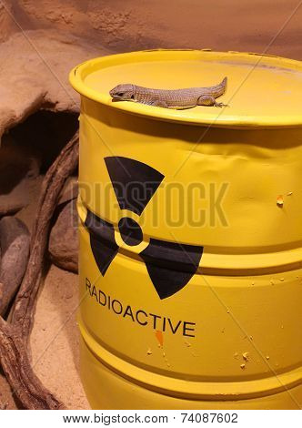 Lizard on a barrel of radioactive waste poster